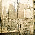 Rainy Day by lokanin