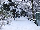 Footsteps In The Snow - Stamford Park, Stalybridge by Chris Goodwin