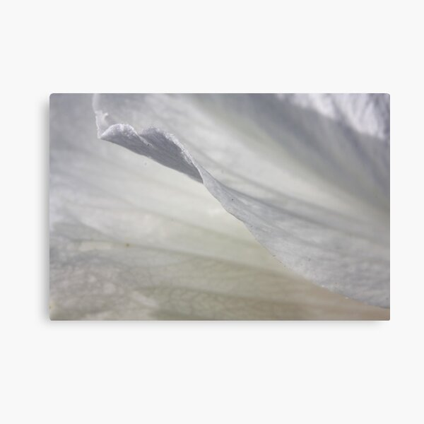 Exquisite lightness Metal Print