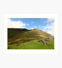 Red Screes Art Print