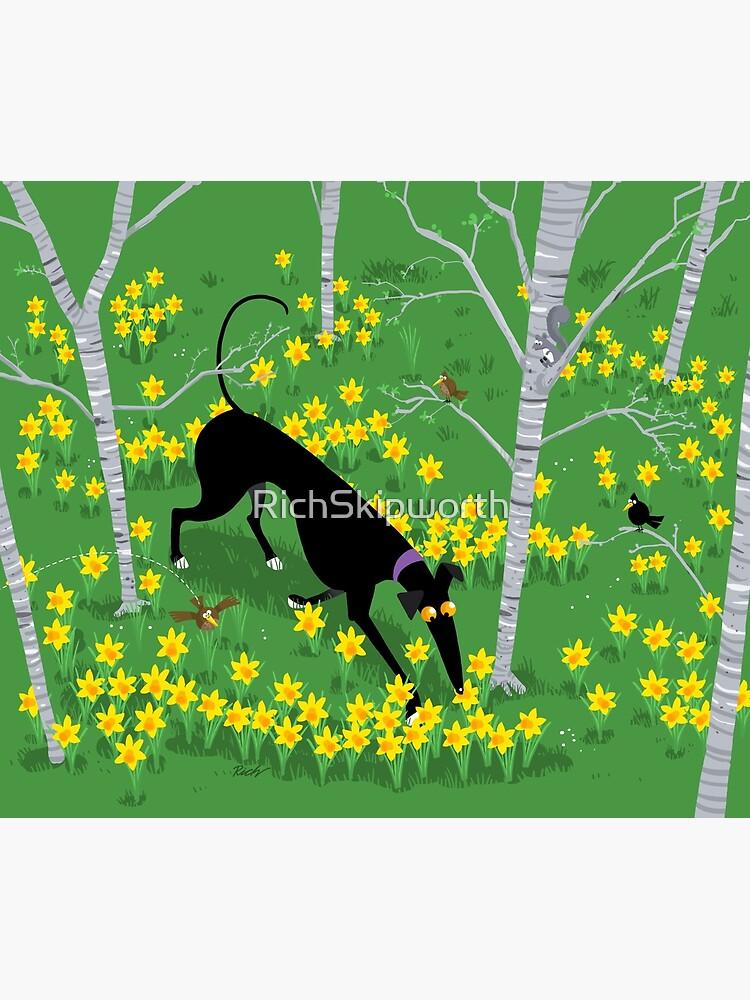 Daffodil Hound by RichSkipworth