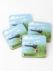 Summer Derp Coasters