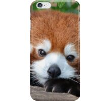 Shy Red Panda iPhone Case/Skin