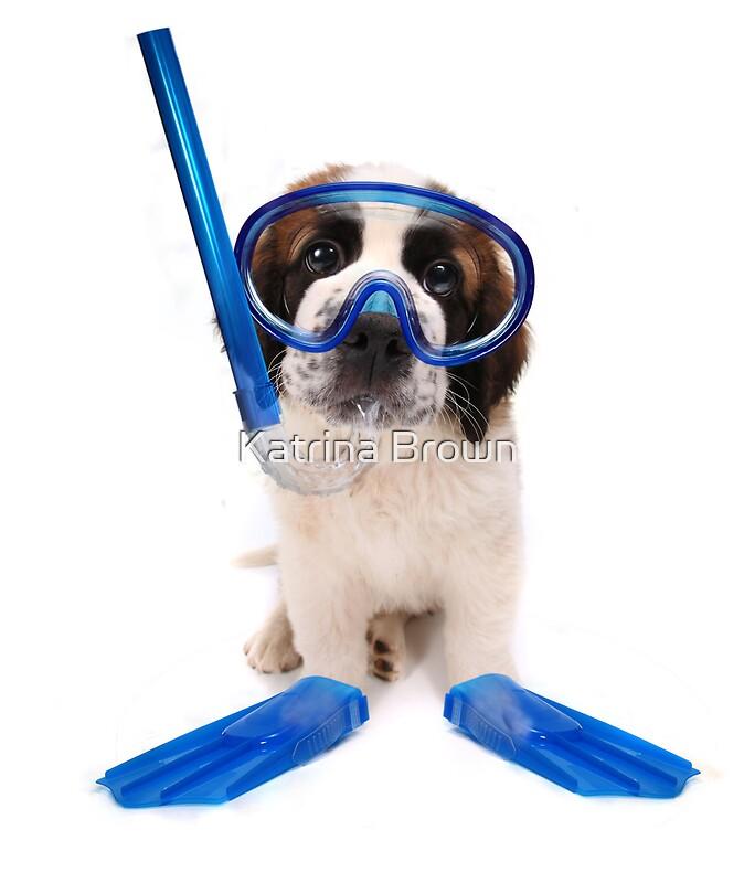 Quot Funny Saint Bernard Puppy Wearing Snorkeling Gear