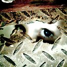 Eye see the rust mum by Melissa James