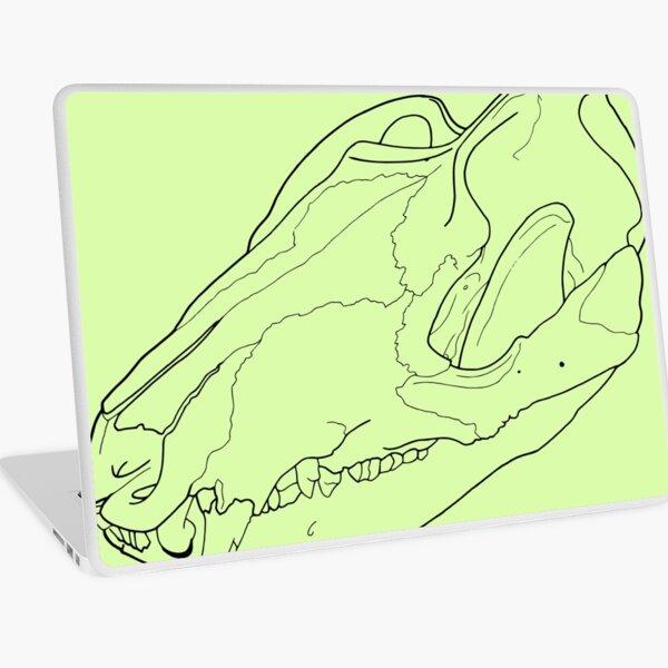 Opossum Skull transparent drawing line-art Laptop Skin