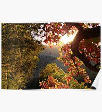 Autumn's Morning Glow, Hawks Bill Crag Poster