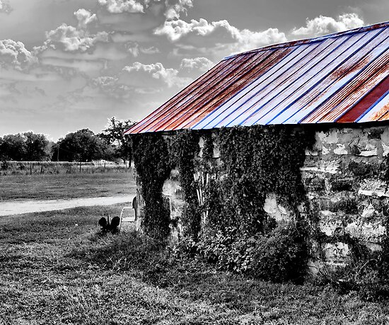 Tin Roof by Sandra Moore