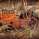 Old Tractor by pennyswork