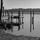 Myall Lakes NSW Australia  by Virginia McGowan