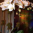 Leidenschaft - Orchideen von Harsh  Malik