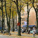 Streetview gothenburg by Anders Lidholm