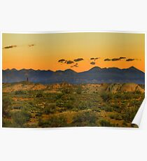 La Sal Mountains / Arches National Park Poster