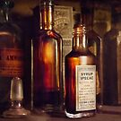 Apothecary - Domestic Remedies  by Michael Savad