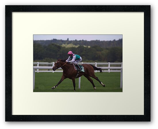 Frankel Stretches Out by lulu kyriacou
