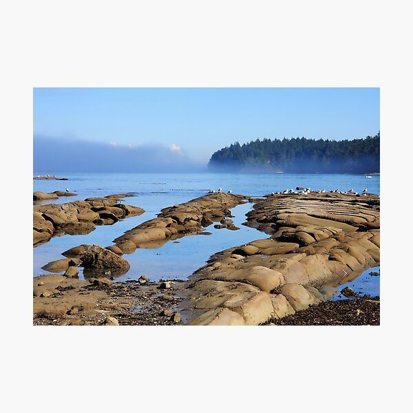 Reef Bay in September Photographic Print