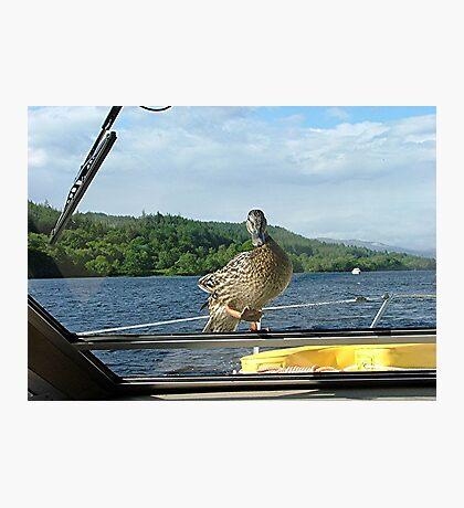 Stowaway, Loch Oich, Caledonian Canal, Scotland. Photographic Print
