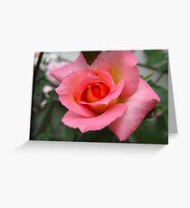 Hick Kicking Rose Greeting Card