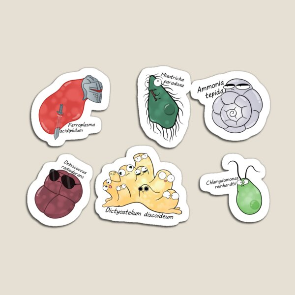Microbe Menagerie Magnet