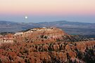 Full Moon Raising ~ Bryce Canyon, Utah USA by Vicki Pelham