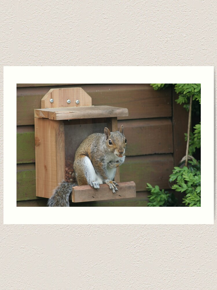 Alternate view of Squirrel 8 Art Print