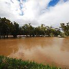 Murrumbidgee, Floods Mark 2 by bazcelt
