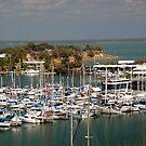 Cullen bay Marina by Lynette Higgs