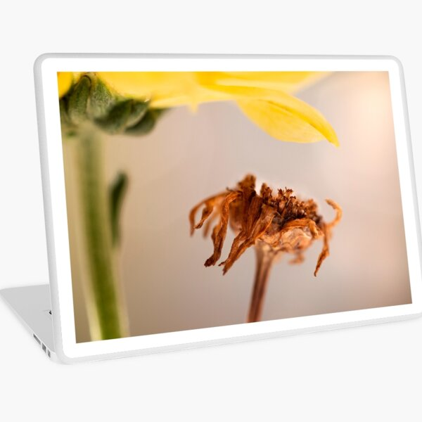 micro dry brown flower beauty Laptop Skin