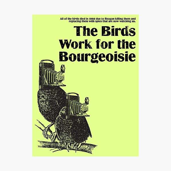 The Birds Work for the Bourgeoisie (series #1) Photographic Print