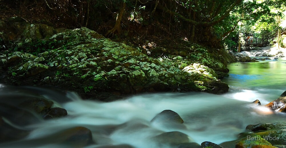 Mt Cougal National Park  by Beth  Wode