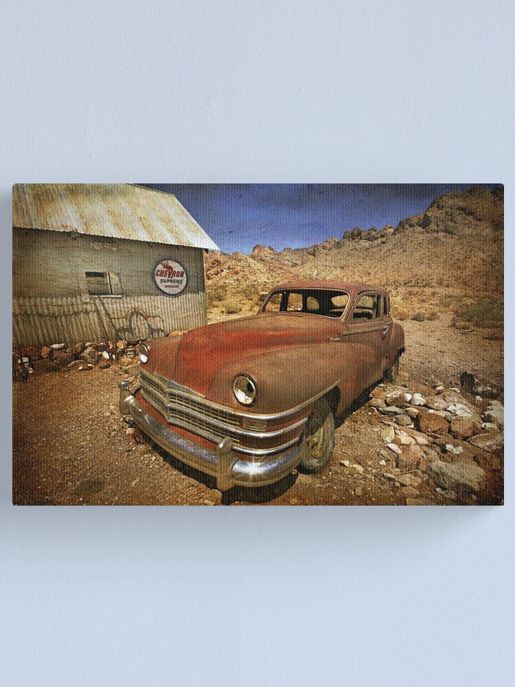 Alternate view of Catching Some Rays Canvas Print