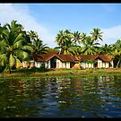 Somewhere in Kerala backwaters by Rishabh Sharma