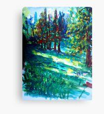 Nature shadows landscape Canvas Print