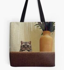 Smiling Silver Tabby Tote Bag