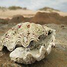 High And Dry - Dunes Beach by cookieshotz