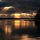 Array of light by Elisabeth van Eyken