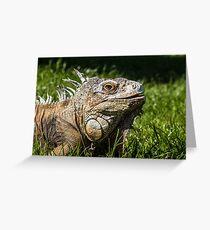 Macro Iguana Lizard Greeting Card