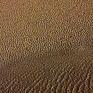 portmeirion's beach by photogenic