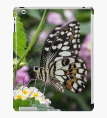 Macro Butterfly on Flowers iPad Case/Skin