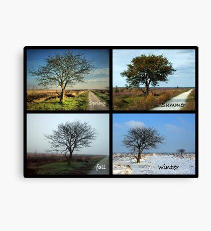 Tree and Seasons Change Canvas Print
