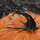 Spooky Halloween by Cecelia Prairie