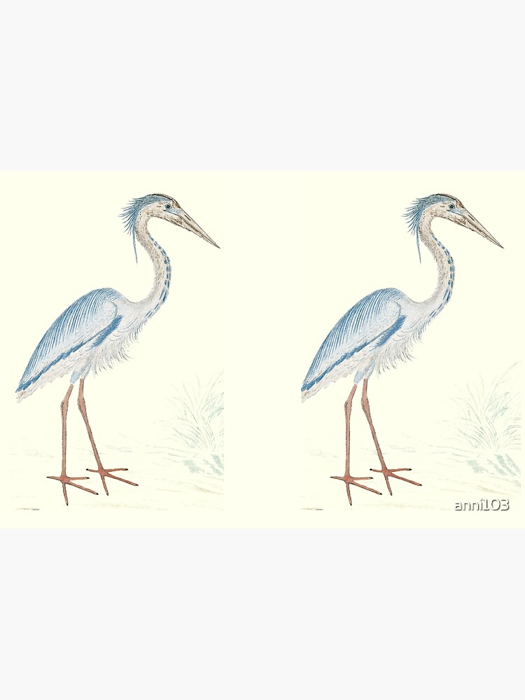 Heron by anni103