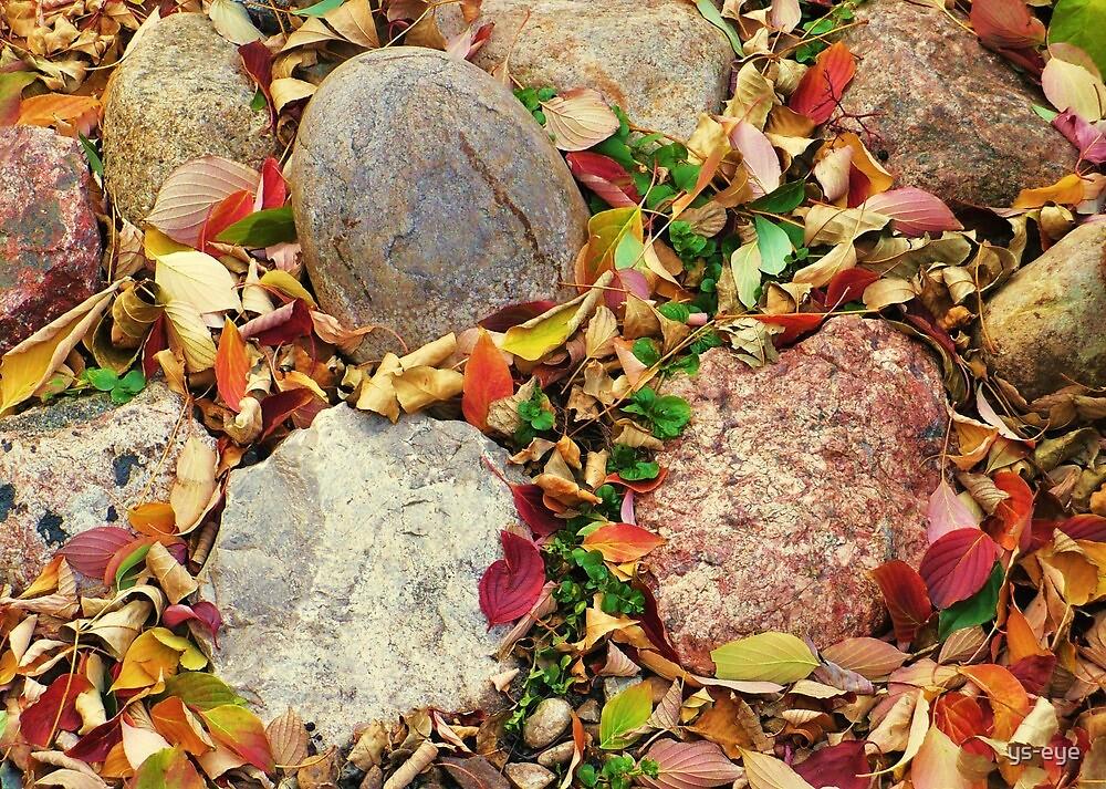 Autumn Stones by ys-eye