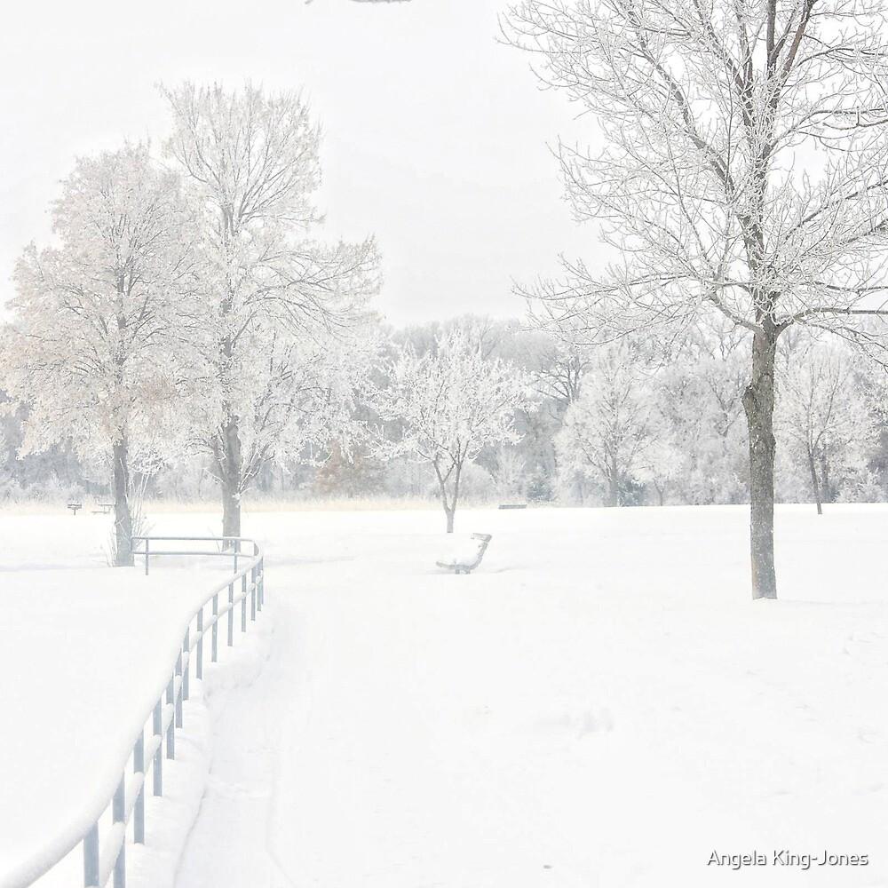 Winter Solstice by Angela King-Jones