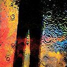 Shadow in the Rain by CarolM