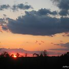 Sun Simply Setting by Debbie Robbins
