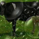 Black Bubbly Bull by Debbie Robbins