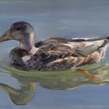Mallard Hen by laillustrator