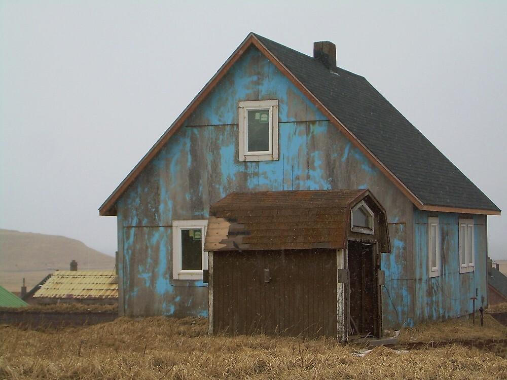 St. Paul house by arawak