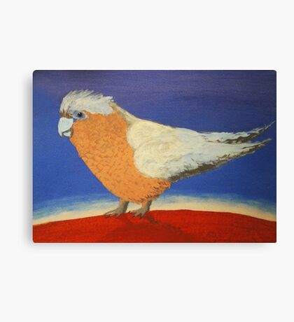 THE SLIGHTY GRUMPY GALAH (AUSTRALIA) Canvas Print